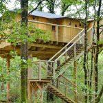 Escaliers pour accéder à la maison nichée dans les arbres